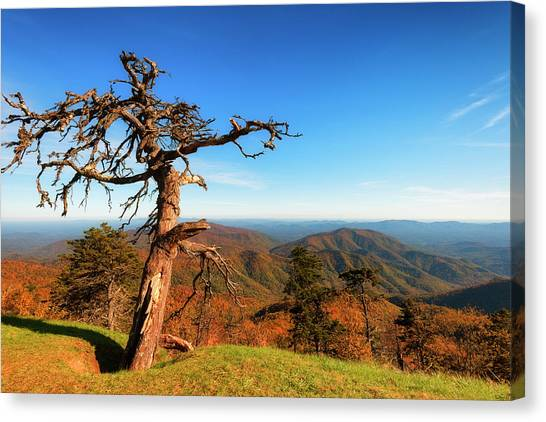 Canvas Print featuring the photograph Autumn Scenic Drive Along The Blue Ridge Parkway In North Caroli by Dee Browning