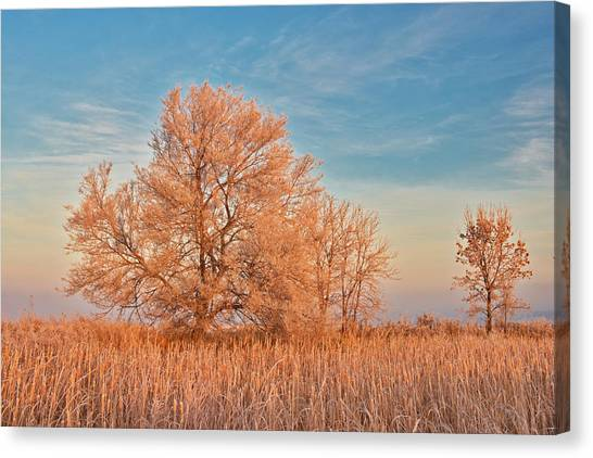 Canada, Manitoba, Lorette Canvas Print by Jaynes Gallery