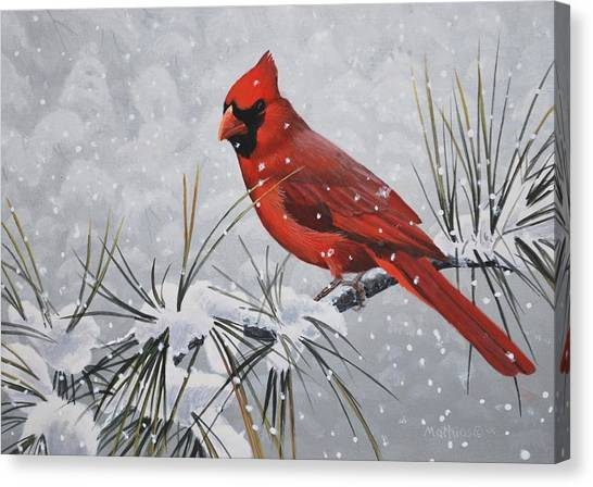 Cardinal In The Snow Canvas Print