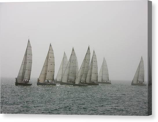 Competitive Sailing In Key West Canvas Print