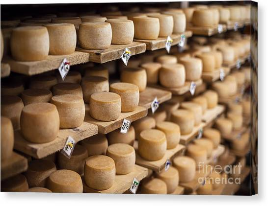 Cow Milk Cheese, Stored In A Wooden Canvas Print by Maxim Golubchikov