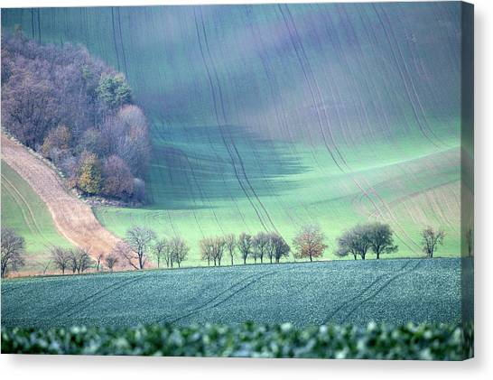 Autumn In South Moravia 1 Canvas Print