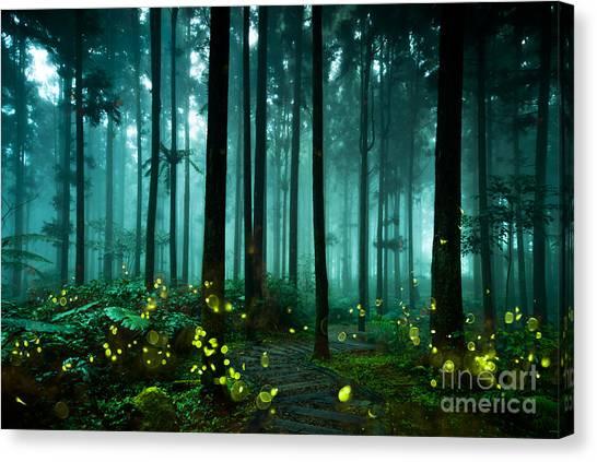 Beauty Canvas Print - Firefly by Htu
