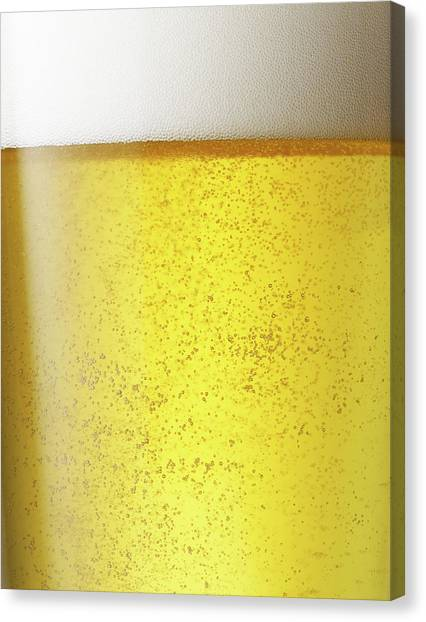 Froth On Beer Canvas Print