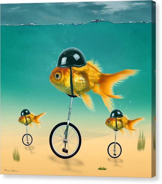 Canvas Print - Gold Fish 3 by Mark Ashkenazi