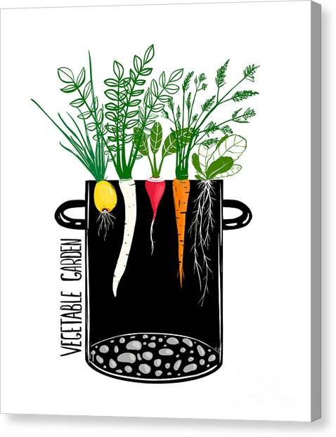Ingredient Canvas Print - Grow Vegetable Garden And Cook Soup by Popmarleo