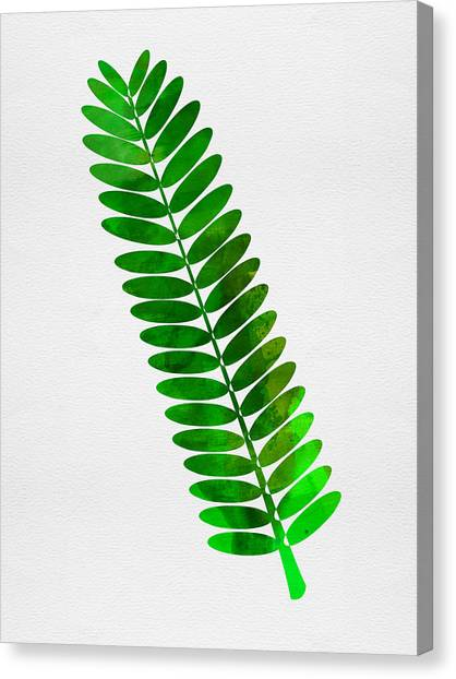 Cacti Canvas Print - Leaf Branch by Naxart Studio