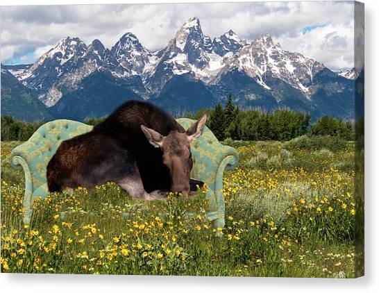 Nap Time In The Tetons Canvas Print