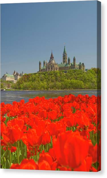 Parliament Hill Canvas Print - Ottawa Tulip Festival by Dennis Mccoleman