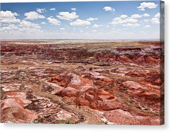 Petrified Forest Canvas Print - Painted Desert, Arizona by Bjorn Holland