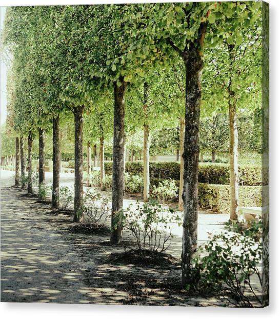 Parisian Canvas Print - Parisian Stroll I by Emily Navas