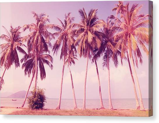 Canvas Print - Pink Summer by Mark Ashkenazi