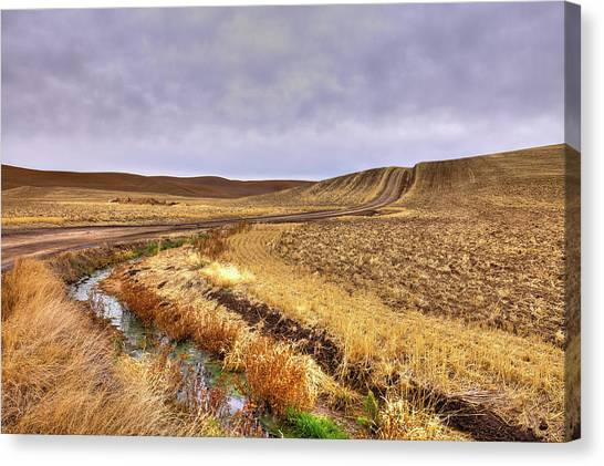 Canvas Print featuring the photograph Plowed Under by David Patterson