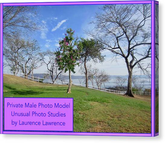 Canvas Print - Private Photo Model Bn by Laurence Lawrence