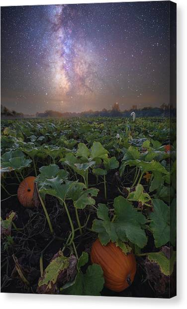 Canvas Print featuring the photograph Pumpkin Patch  by Aaron J Groen