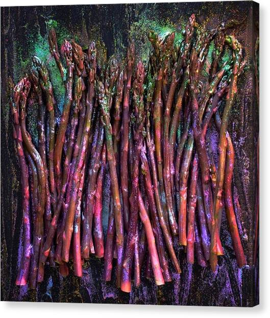 Purple Asparagus Canvas Print