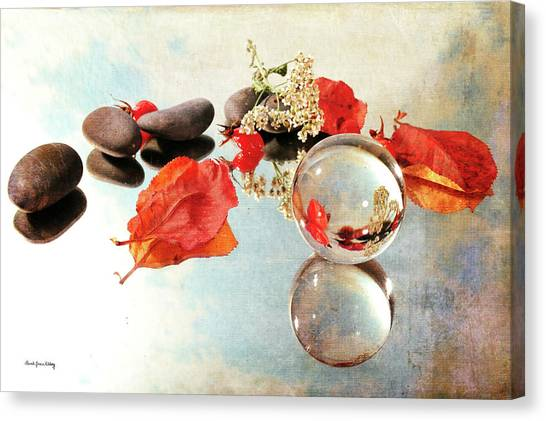 Canvas Print featuring the photograph Seasons In A Bubble by Randi Grace Nilsberg