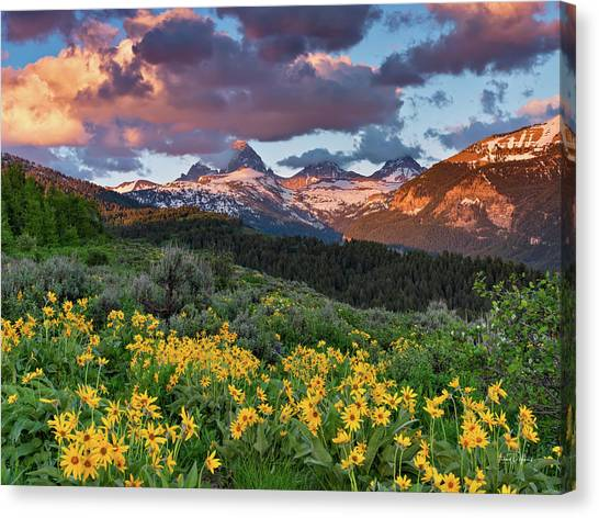 Spring Sunset In The Tetons Canvas Print by Leland D Howard