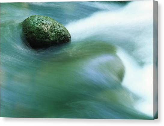 Stream Canvas Print by Ooyoo