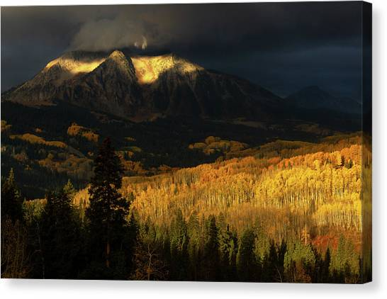 The Golden Light Canvas Print