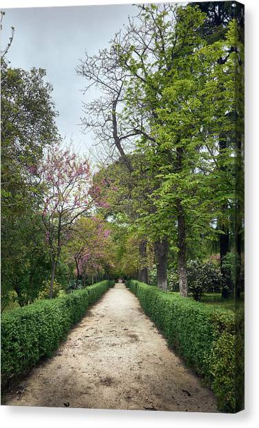 The Paths Of The Retiro Park Canvas Print