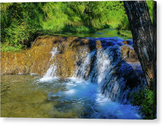The Springs In It's Summer Green, Big Hill Springs Provincial Re Canvas Print