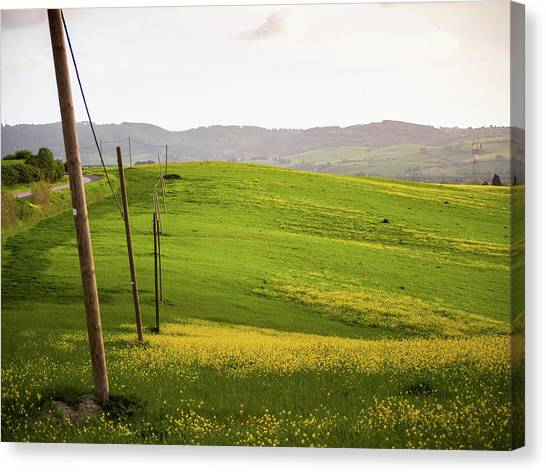 Tuscan Landscapes. Hills In The Spring Canvas Print