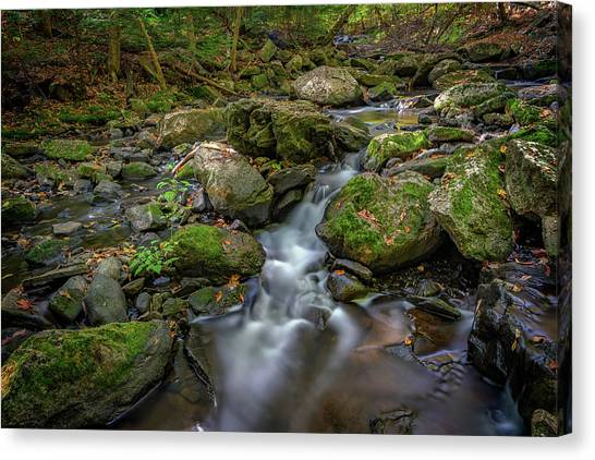 Canvas Print featuring the photograph Vaughan Brook by Rick Berk