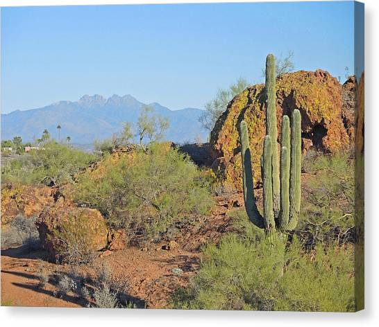 Canvas Print featuring the photograph View To Four Peaks  by Lynda Lehmann