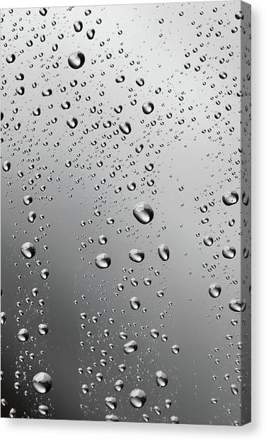 Water Drops Background Dew Condensation Canvas Print