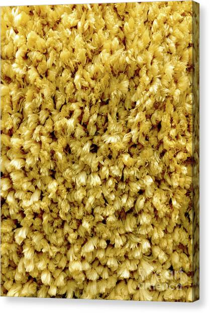 Canvas Print - Yellow Long Pile Carpet by Tom Gowanlock