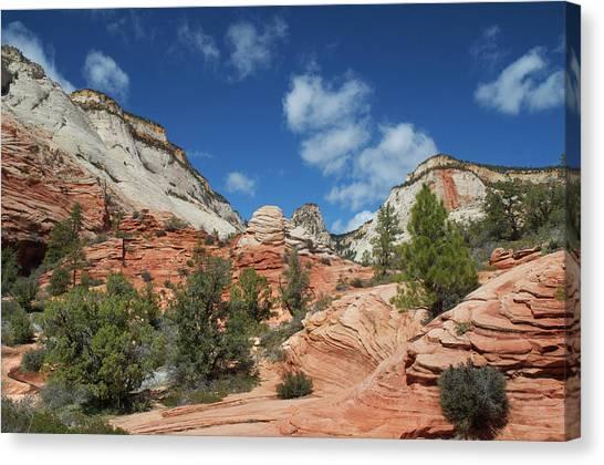 Zion Canyon Natural Beauty Canvas Print by Mitch Diamond