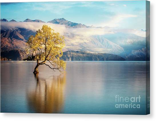 Alone And Determined Canvas Print