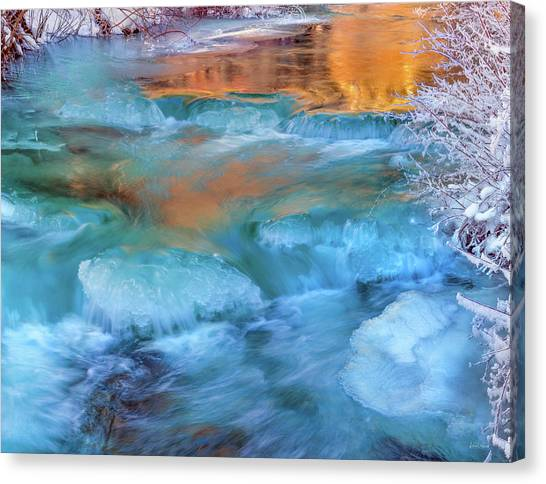 Color Of Winter Canvas Print by Leland D Howard
