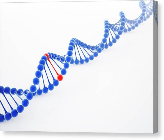 Dna Molecule, Artwork Canvas Print by Science Photo Library - Andrzej Wojcicki