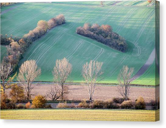 Canvas Print featuring the photograph Autumn In Moravia 2 by Dubi Roman