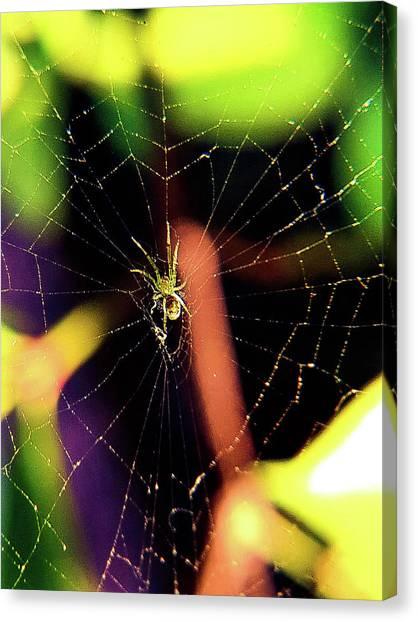 Web Of Hearts Canvas Print