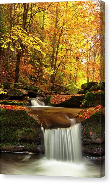 River Rapid Canvas Print