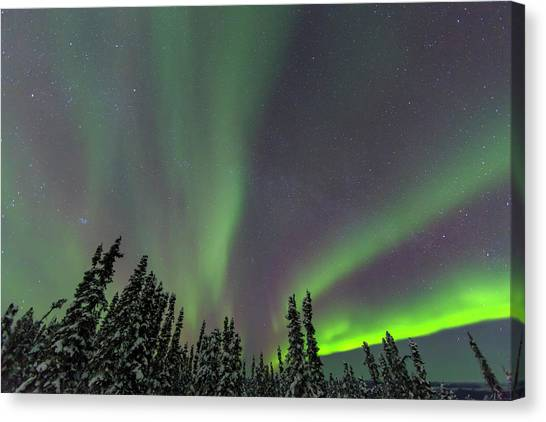 Aurora Borealis, Northern Lights Canvas Print by Stuart Westmorland