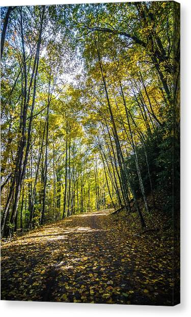 Canvas Print featuring the photograph Scenic Views Along Virginia Creeper Trail by Alex Grichenko