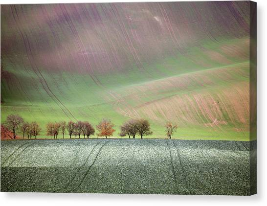 Autumn In South Moravia 3 Canvas Print