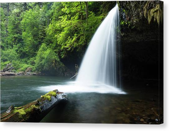 Canvas Print - Waterfall In A Forest, Samuel H by Panoramic Images