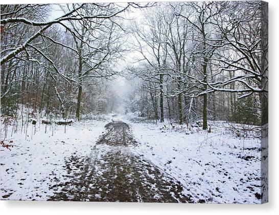 30/01/19  Rivington. Lower Barn. Arboretum Path. Canvas Print