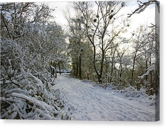 30/01/19  Rivington. Top Path Below The Pigeon Tower. Canvas Print