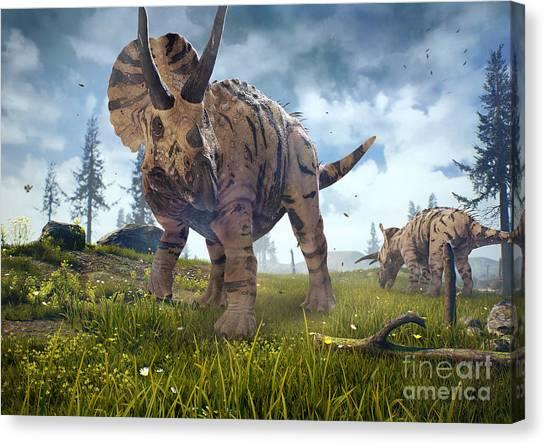 Nature Canvas Print - 3d Rendering Of Triceratops Horridus In by Herschel Hoffmeyer
