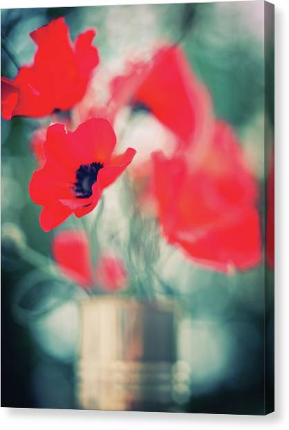Vase Of Flowers Canvas Print - Assorted Location Shoots by N-photo Magazine