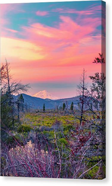 60 Miles To Mount Shasta Canvas Print