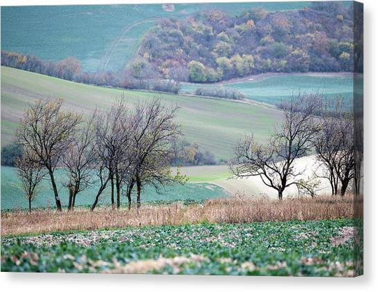 Canvas Print featuring the photograph Autumn In Moravia 8 by Dubi Roman