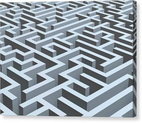Maze, Artwork Canvas Print by Pasieka