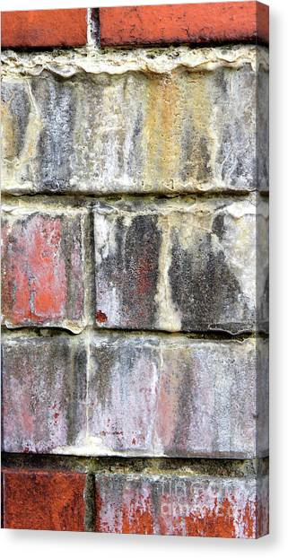 Canvas Print - Old Brick Wall by Tom Gowanlock